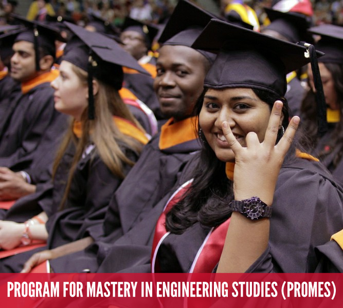 college undergraduate success program