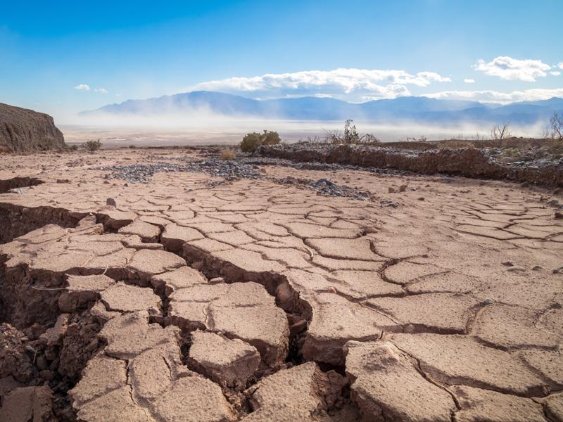 Mitigating Natural Disasters