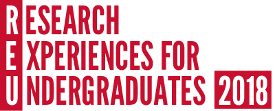 Research Experience for Undergraduates (REU)