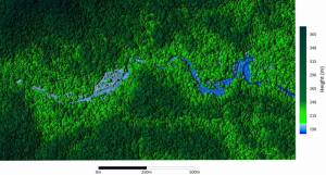 A section of Honduran rainforest mapped by NCALM researchers. The center will use the same LiDAR technology to create a much larger map of the Tahoe National Forest.