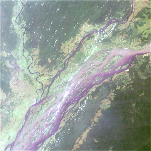 NASA satellite image of the Congo River Basin. Credits: ESA