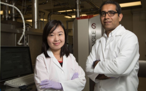 Mechanical Engineering Postdoctoral Fellow Ying Gao, left, and Ph.D student in ME, Mojtaba Asadirad, create the future -- flexible computers