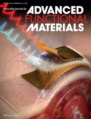 UH wearable electronics research featured as back cover article in Advanced Functional Materials.