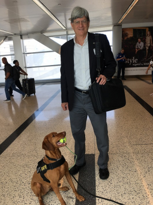 UH Cullen College of Engineering professor Stuart Long with another successful TSA explosives-detecting pup.
