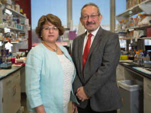 Married for 44 years, Muna Naash, left, and Muayyad Al Ubaidi are partners in the lab, too, where they are examining the protein peripherin2 and its link to blinding eye diseases.