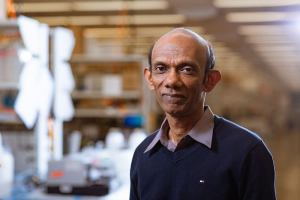 Dr. Chandra Mohan, the Hugh Roy and Lillie Cranz Cullen Endowed Professor in Biomedical Engineering at the Cullen College of Engineering, has been given a $300,000 award by the Lupus Research Alliance.