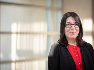 Haleh Ardebili, Bill D. Cook Associate Professor of Mechanical Engineering at UH, led work demonstrated that modeling based on the material nanoarchitecture can provide a more accurate understanding of ion diffusion and other properties in composite electrodes.