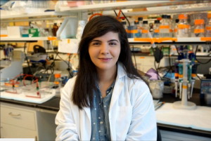 Mashal Kakakhel, now a first year medical student, was lead author for a paper shedding light on how rod and cone photoreceptors in the eye work and interact. The work was done with Dr. Muna Naash, the John S. Dunn Endowed Professor of Biomedical Engineering.