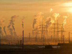 New research from UH Energy and the Hobby School of Public Affairs found most Americans , including most Texans, believe climate change is real and are willing to pay more for low-carbon products. [Photo: Pexels.]