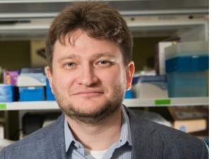 Sergey Shevkoplyas, associate professor of biomedical engineering.