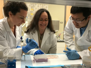 Yasemin Akay works with students in the lab. Findings have reported that perinatal substance abuse may cause faulty assembly of certain brain networks.