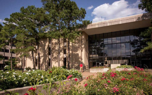 A group of 21 students from the Cullen College of Engineering have been selected for the University of Houston's Summer Undergraduate Research Fellowships.