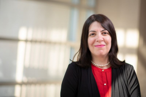 Haleh Ardebili, Ph.D., a professor of Mechanical Engineering was one of three professors recognized with the Undergraduate Research Mentor Award.