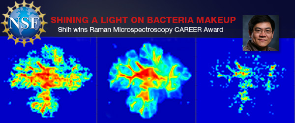 Shih wins Raman Microspectroscopy CAREER Award