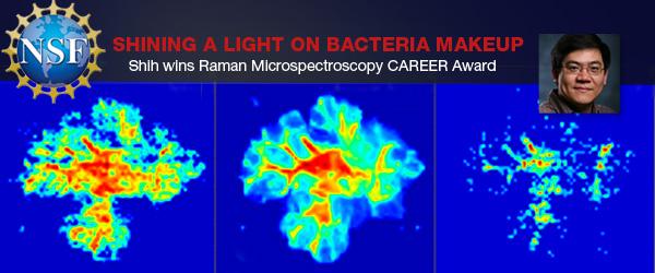 Shih wins Raman Microspectroscopy CAREER Award