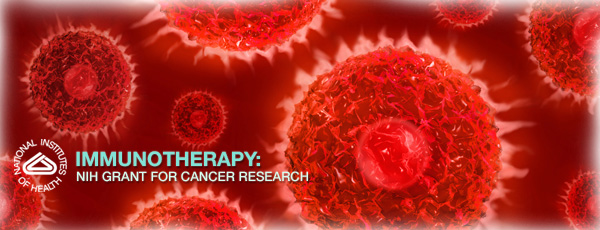 Immunotherapy: NIH Grant for Cancer Research