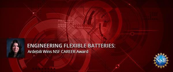 Engineering Flexible Batteries: Ardebili Wins NSF CAREER Awa