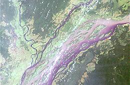 Congo River Basin