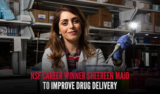 NSF CAREER Winner Sheereen Majd to Improve Drug Delivery