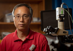 UH ECE Professor Jiming Bao Elected Fellow of American Physical Society